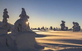 Comment organiser un voyage en Laponie ?